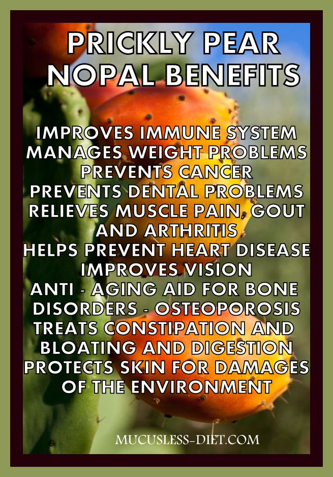 Prickly Pear Benefits Picture