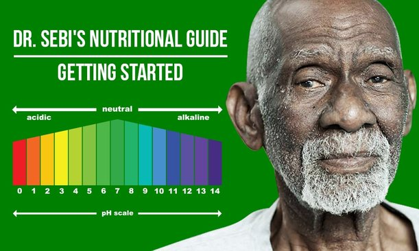 DR  SEBI NUTRITIONAL GUIDE - THE ORIGINAL MUCUSLESS DIET